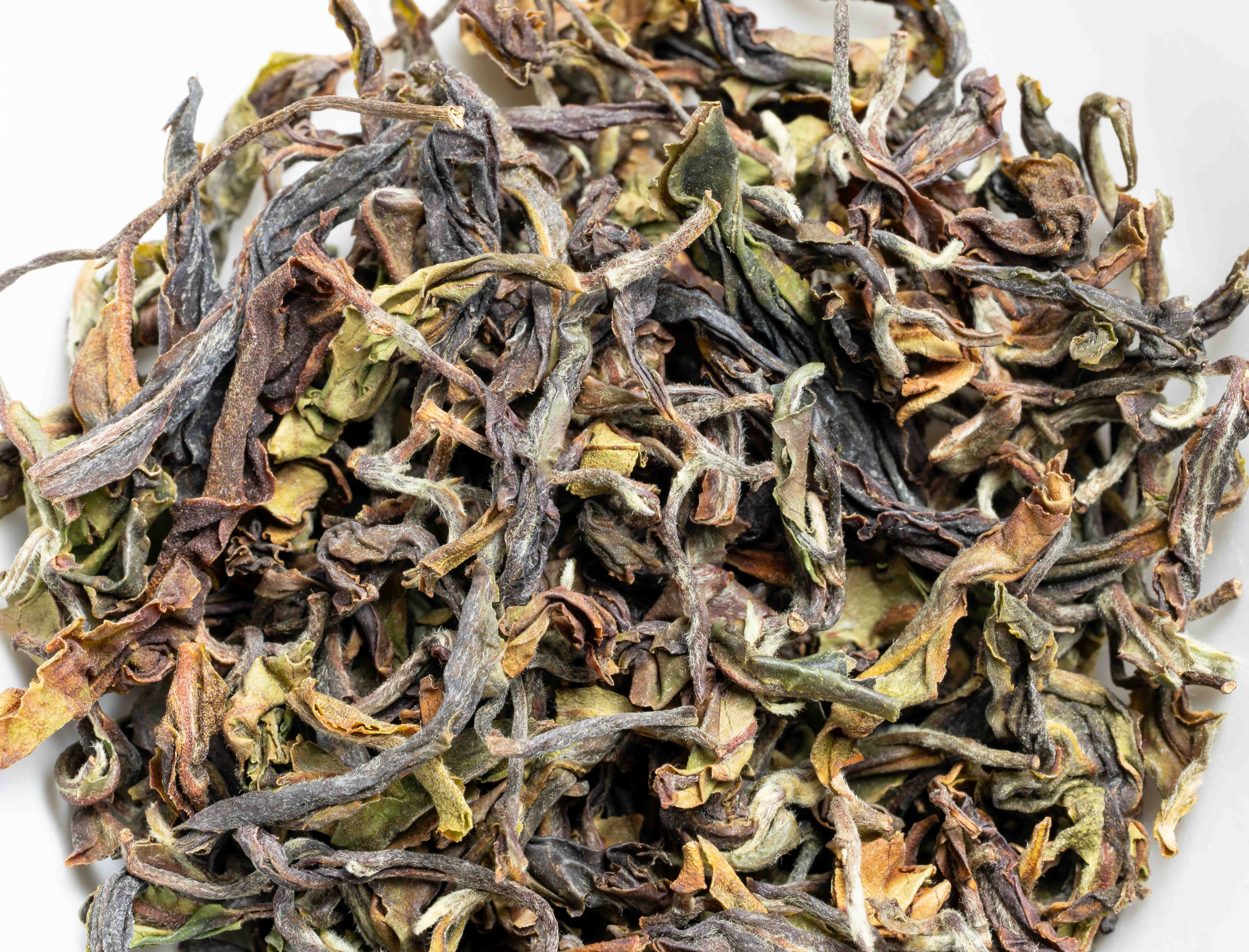 Rohini Spring Breeze First Flush 2020 - 50 g