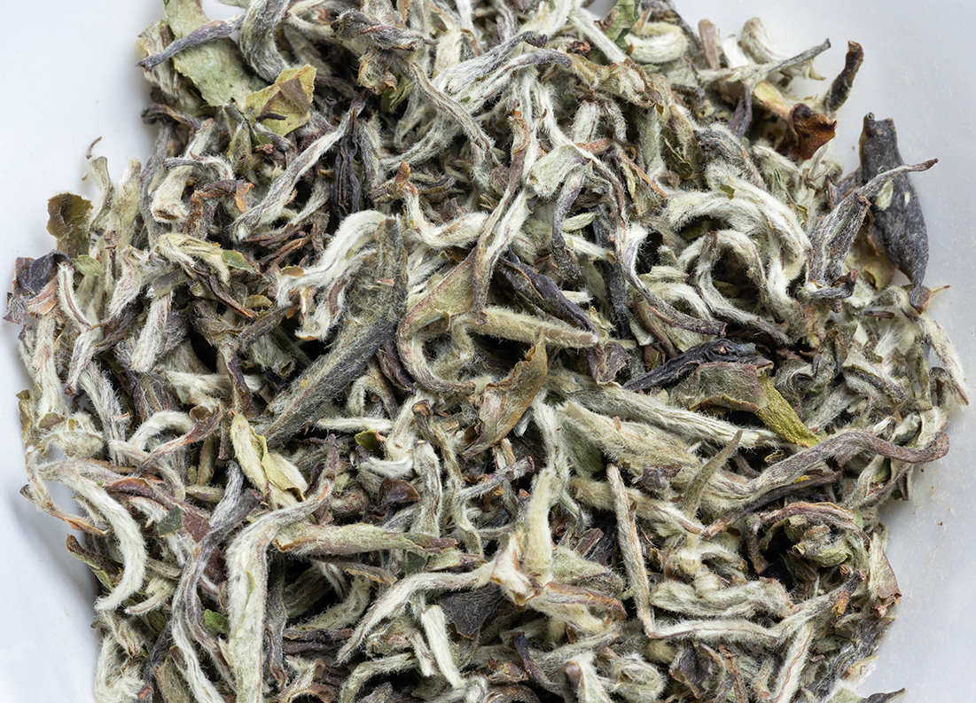 Jun Chiyabari Himalayan White Surprise Organic ff 2020 - 50 g